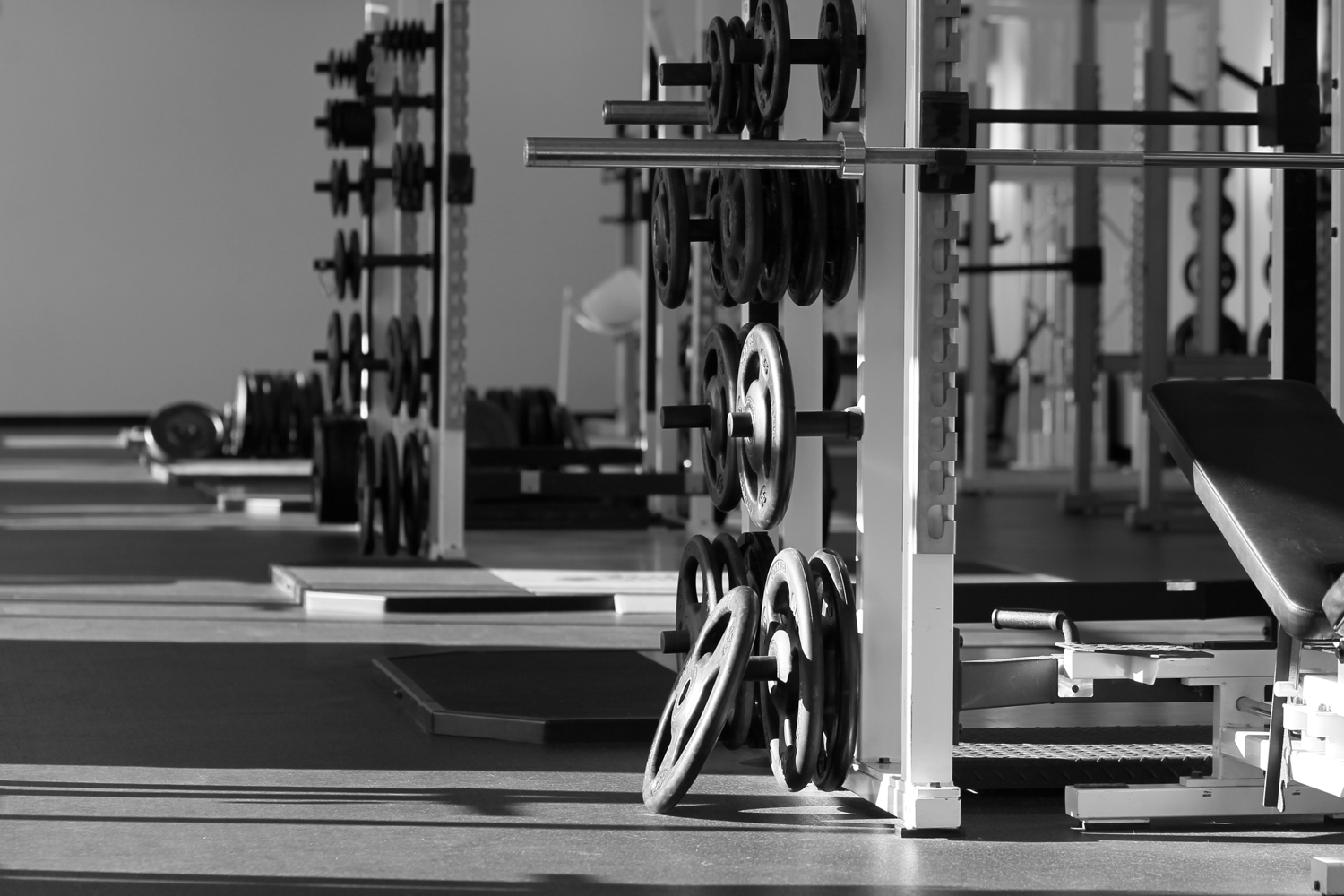 Power/Squat Racks & Equipment